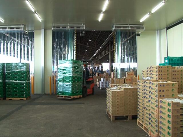 浦和中央青果市場(電動アコーディオンカーテン式冷蔵庫設備)